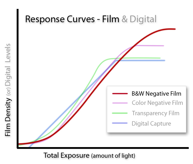Black and White Film Curve